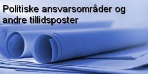 AnsvarDF11